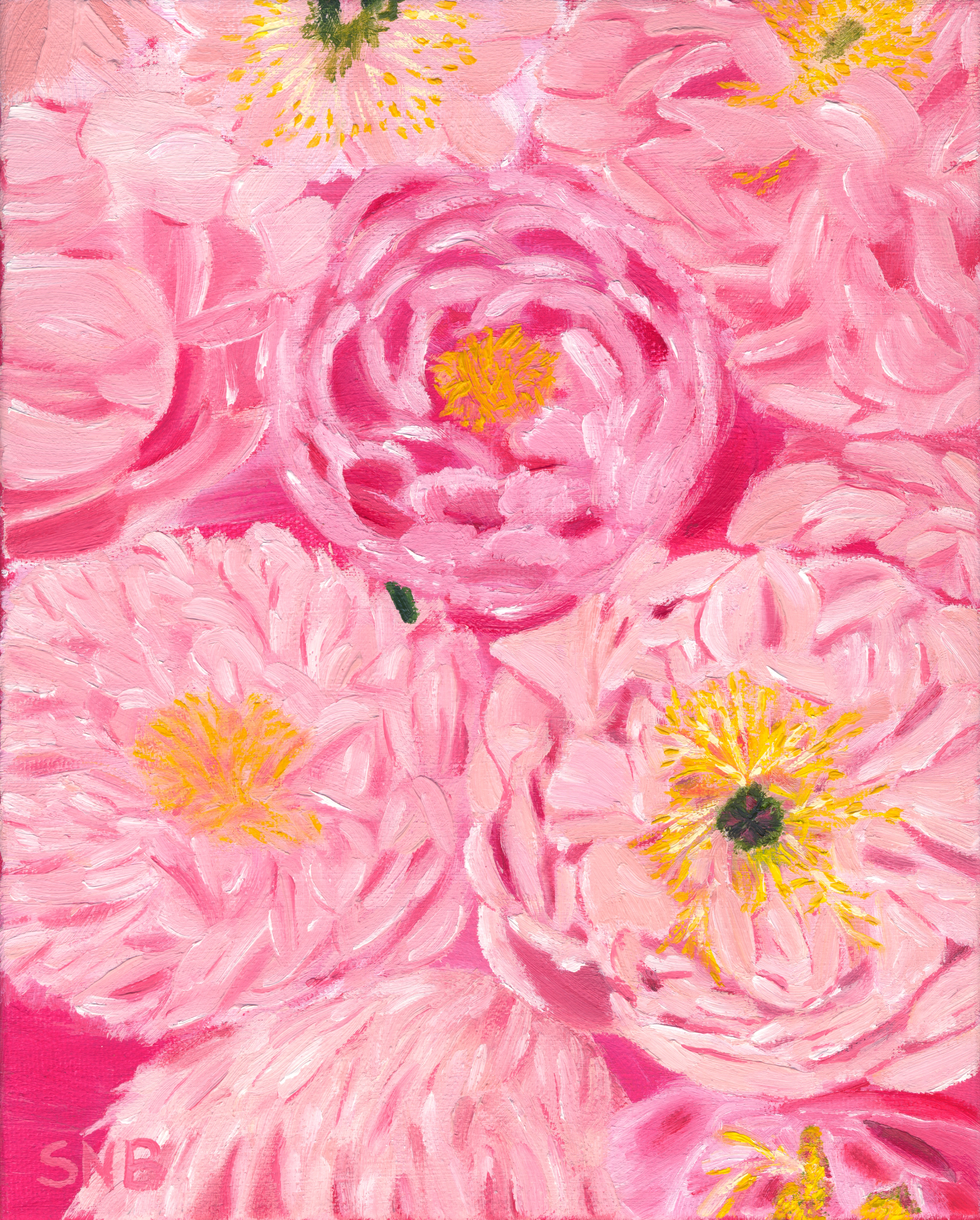 Pink Peonies, a 8 x 10 Oil Painting on Canvas. The Painting is of multiple pink peonies with yellowish centers of different varieties on a bright pink background
