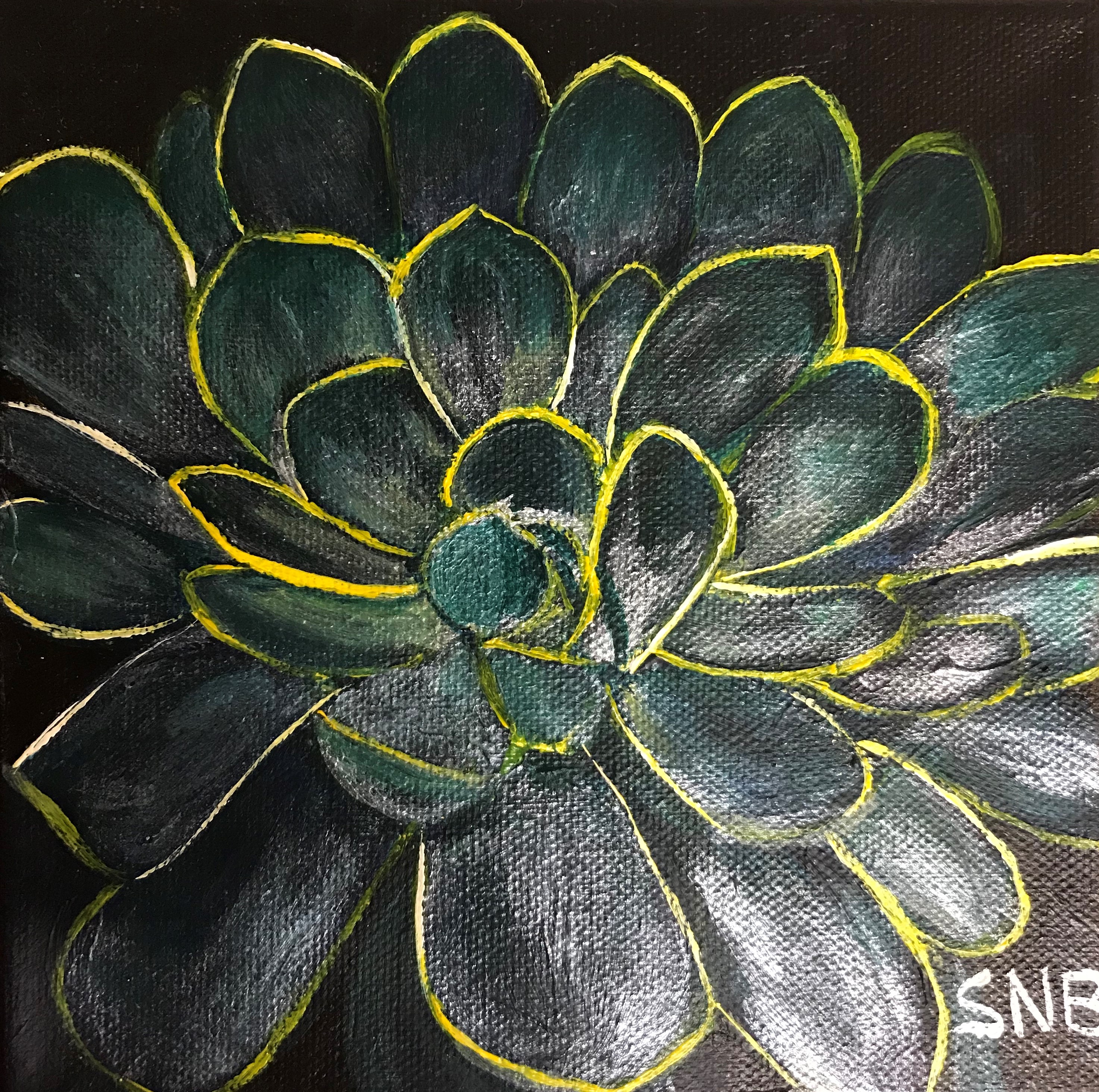 Sedum 5, a 6 x 6 Acrylic Painting on Canvas. The Painting is of a single dark green sedum plant with yellow edges on a black background